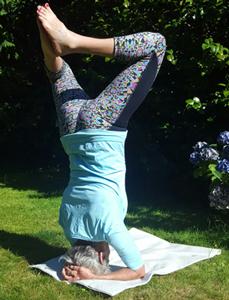 yoga journey classes  hatha yoga lessons